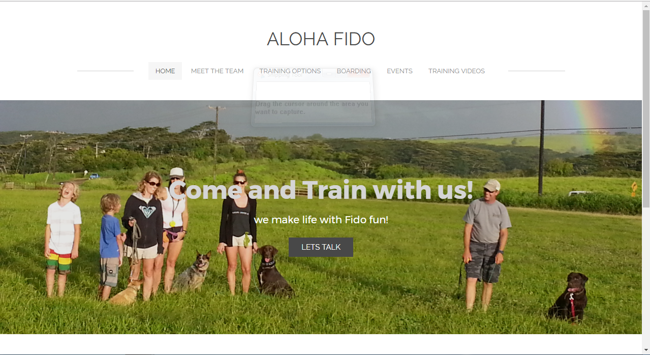Weebly Website Design and Development for Dog Training Aloha Fido